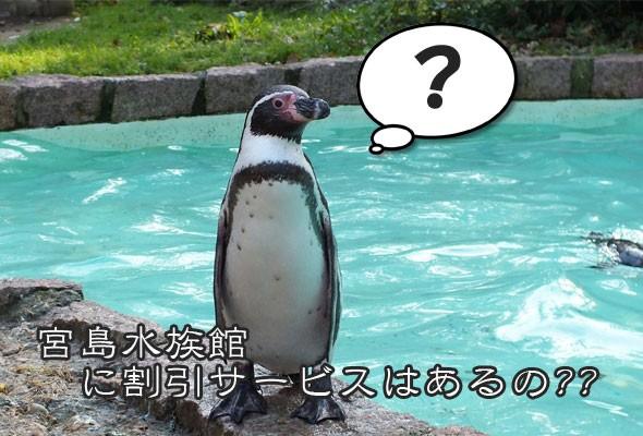 宮島水族館の入館料金が割引になる方法ってあるの!?