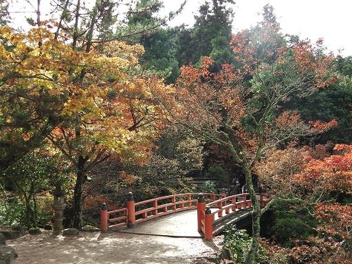 2015年のもみじ橋と紅葉