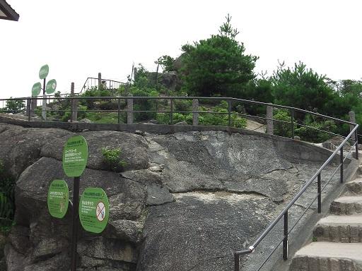 弥山の獅子岩展望台を見上げる