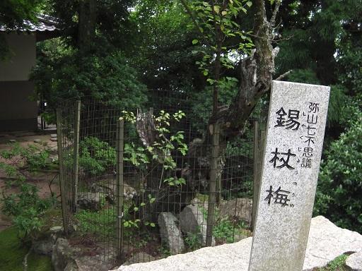 七不思議の碑と錫杖梅