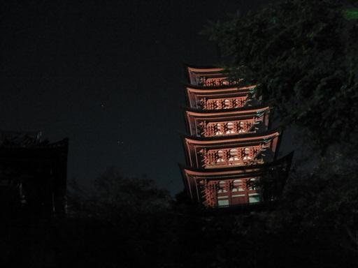 ライトアップされた五重塔