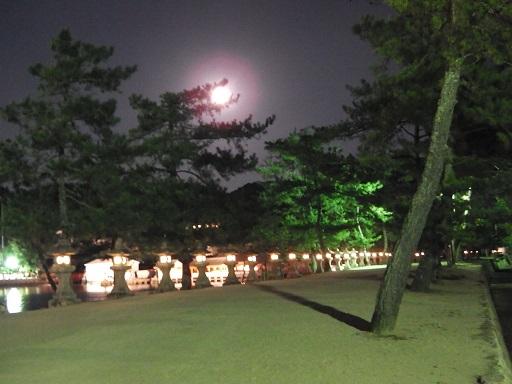 厳島神社横の参道と灯篭