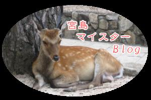 宮島観光ロゴ写真