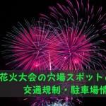 2017年宇品花火大会の穴場スポットと交通規制・駐車場情報!!