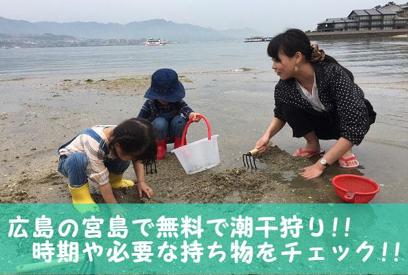 宮島では何ができるの?10種の遊び方&楽しみ方!