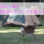 ケビンにも泊まれる!宮島の包ヶ浦で海水浴とキャンプを楽しもう!