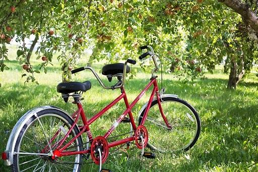 二人乗り用の自転車
