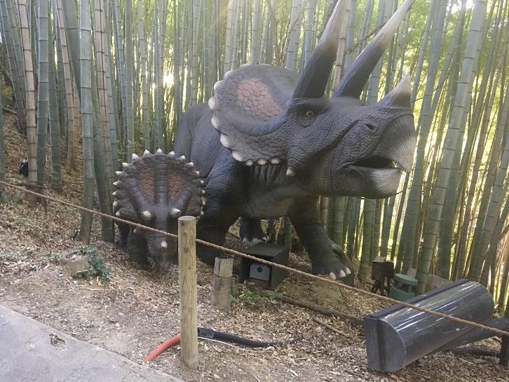 ダイナソーパークのトリケラトプスの写真